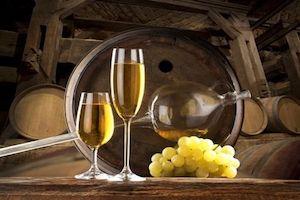 Etyek Wine Tour from Budapest