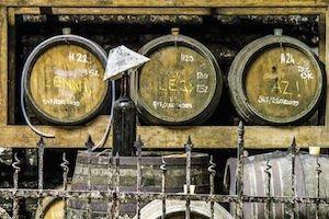 Budapest Wine Day Trip